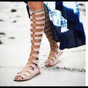 Jeffrey Campbell Rae gladiator sandal